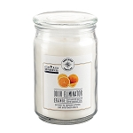 Odor Eliminator 18 oz Jar Candles - Orange Zest - Case of 6