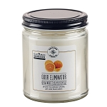 Orange Zest Odor Eliminator Candles - Odor Eater