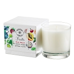 Wholesale 10 oz Tumbler from the Fruits Collection of Candles