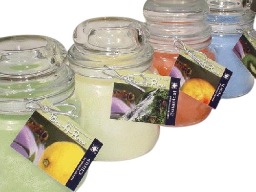 Back Yard Bug Away Scented Citronella 18oz Jars - Case of 12